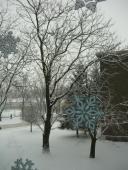 Zima z tepla domova