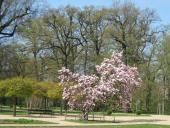 Konečně jaro