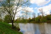 Jaro u rybníku