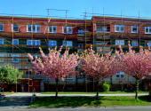 Jaro v Přerově