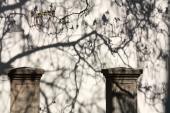 Jarní stíny v zámeckém areálu
