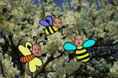 Motýlek a čmeláčci
