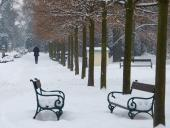 056 Přerov - procházka zimním Michalovem