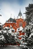 075 Kostel Na Nebevzetí Panny Marie v zimě