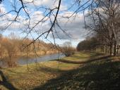 152 Hra větví (Přerov, alej u Bečvy)