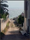 0007 Mezi hrady, Port El Kantaoui, Tunisko