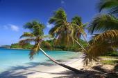 0033 Palm Island, Grenadiny Závětrné ostrovy
