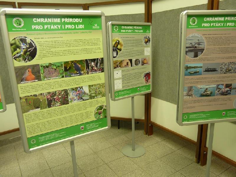 Výstava Chráníme přírodu pro ptáky i pro lidi, obrázek se otevře v novém okně