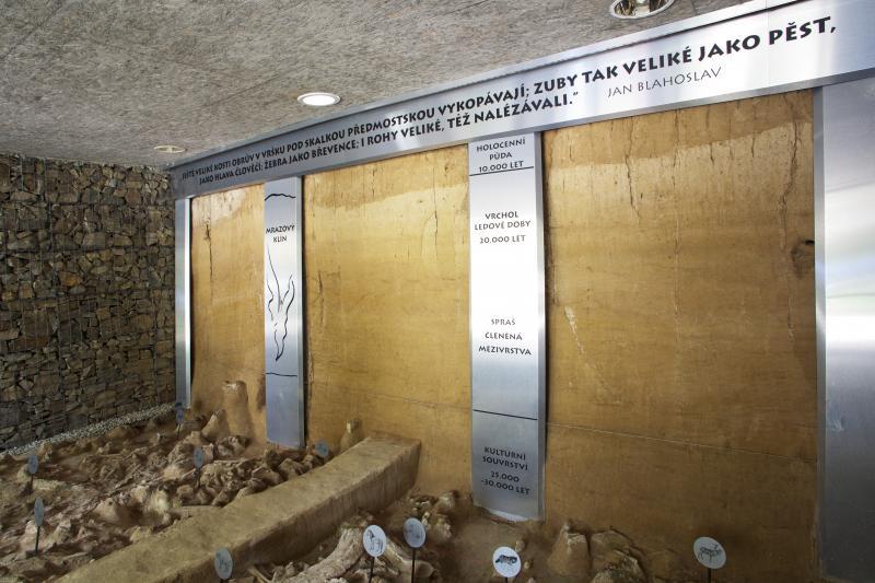 Památník lovců mamutů interiér (foto Dominik Bachůrek)