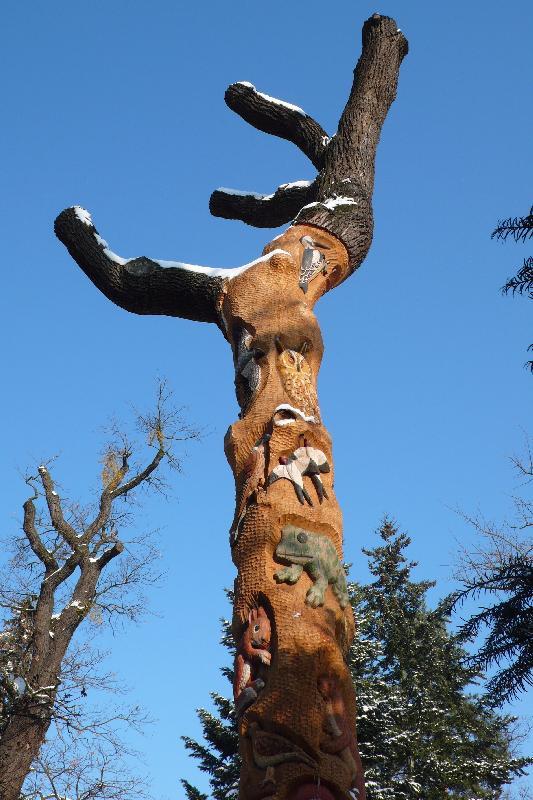 strom Otesánek, obrázek se otevře v novém okně