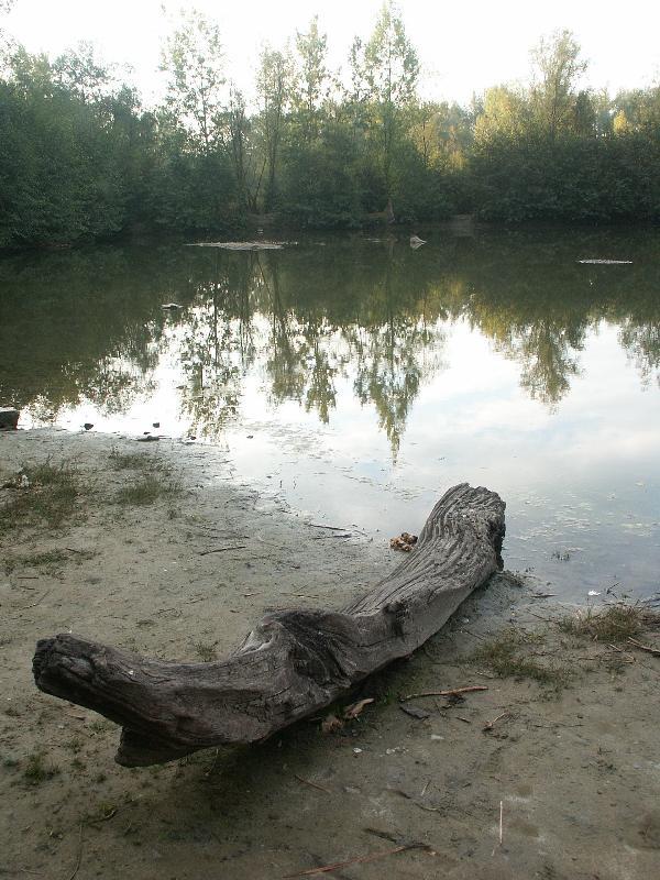 Malé laguny, obrázek se otevře v novém okně