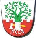 Obec Buk